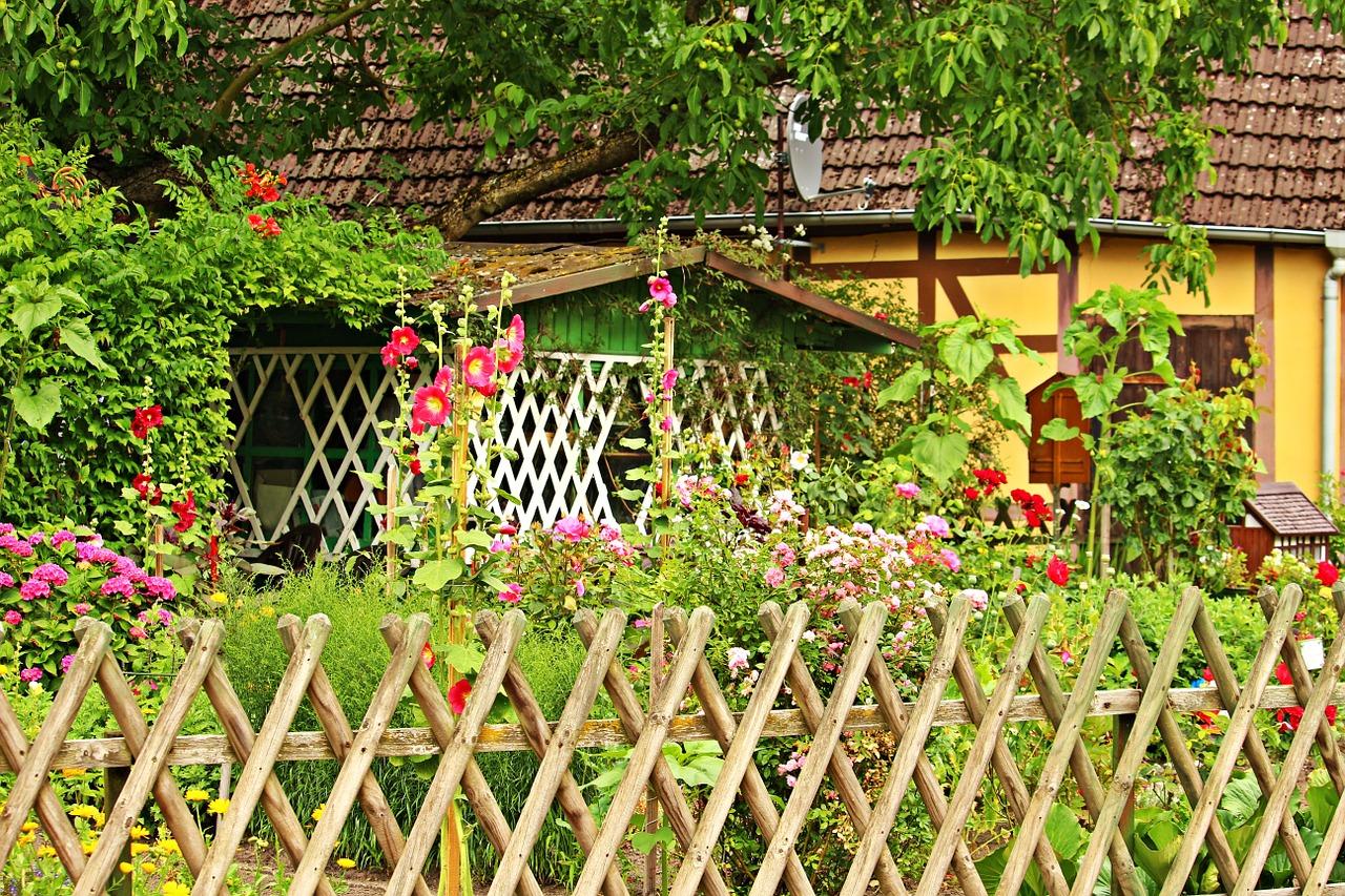 Fai Da Te Giardino Zen giardinaggio fai da te: il giardino - tabbid blog